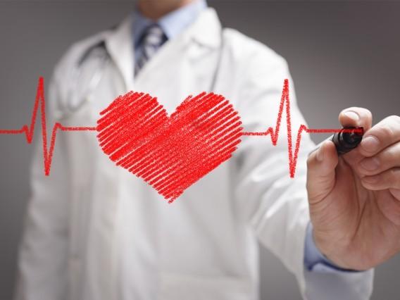 Kardiológia (hamarosan)